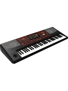 Korg PA-700 Professional Arranger (With Indian Styles)