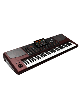 Korg PA-1000 Professional Arranger (With Indian Styles)