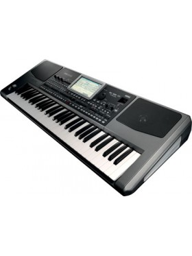 Korg PA-900 Professional Arranger (With Indian Styles)
